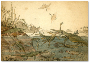 Duria antiquior, by geologist Henry de la Beche, based on fossils found by Mary Anning.