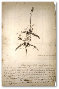 Mary Anning's letter and drawing announcing the discovery of a fossil animal now known as Plesiosaurus dolichodeirus, December 26,1823. Source