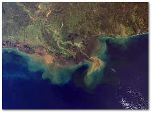 Sediment plumes from the Mississippi and Atchafalaya rivers.  NASA