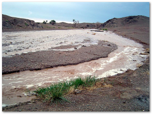 A 2004 flash flood in the Gobi Desert.  Source
