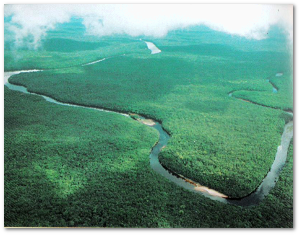 Two centuries later, the Orinoco isn't exactly heavily urbanized.  Source