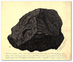 Meteorite, by Etheldred Benett.  Source