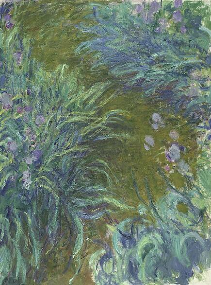 Monet Irises
